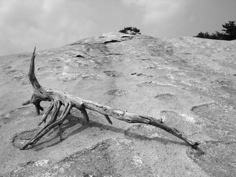 """Stone Mountain<br /> <br />  <a href=""""http://sillymonkeyphoto.com"""">http://sillymonkeyphoto.com</a>"""