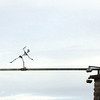 "Rhine Flying Skeleton<br /> <br />  <a href=""http://sillymonkeyphoto.com"">http://sillymonkeyphoto.com</a>"