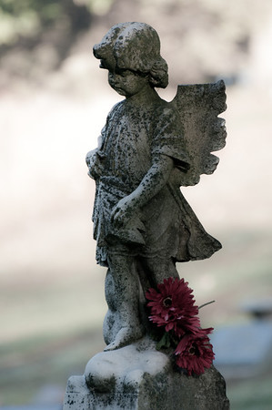 10/3/2011 : I was attracted to the contrast of the red flowers against the bland angel.  The post processing is desaturated a little - which I think accentuates the flowers.