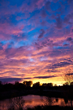 6 Nov 2011 : On Thursday we had a very windy and overcast day - not quite winter yet, but you could tell that it's not very far away.  As the sun set, it got below the cloud cover, and presented a spectacular array of colours in the sky.  There has been no colour enhancement done to this image - those are the real colours.