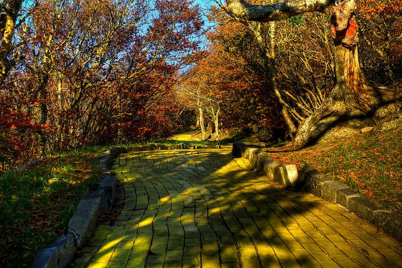 "Yellow Brick Road at OZ Land<br /> <br />  <a href=""http://sillymonkeyphoto.com/2010/10/17/yellow-brick-road-at-oz-land/"">http://sillymonkeyphoto.com/2010/10/17/yellow-brick-road-at-oz-land/</a>"