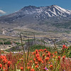 "Mt St Helen<br /> <br /> <a href=""http://sillymonkeyphoto.com/2012/05/13/mt-st-helen/"">http://sillymonkeyphoto.com/2012/05/13/mt-st-helen/</a>"