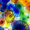 "<a href=""http://sillymonkeyphoto.com/2013/02/02/flower-gardens/"">http://sillymonkeyphoto.com/2013/02/02/flower-gardens/</a>"