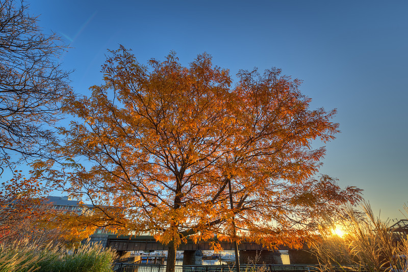 """More Autumn Photos<br /> <br /> <a href=""""http://sillymonkeyphoto.com/2012/11/25/more-autumn-photos/"""">http://sillymonkeyphoto.com/2012/11/25/more-autumn-photos/</a>"""