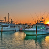 "Key West Sunrise<br /> <br />  <a href=""http://sillymonkeyphoto.com/2011/06/14/key-west-sunrise-2/"">http://sillymonkeyphoto.com/2011/06/14/key-west-sunrise-2/</a>"
