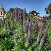 """In Carmel<br /> <br /> <a href=""""http://sillymonkeyphoto.com/2013/05/17/friday-mystery-photo-52/"""">http://sillymonkeyphoto.com/2013/05/17/friday-mystery-photo-52/</a>"""