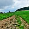 "Sunday Hike<br /> <br />  <a href=""http://sillymonkeyphoto.com/2010/08/17/sunday-hike/"">http://sillymonkeyphoto.com/2010/08/17/sunday-hike/</a>"