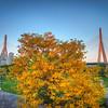 """Autumn in Boston<br /> <br /> <a href=""""http://sillymonkeyphoto.com/2012/11/20/autumn-in-boston/"""">http://sillymonkeyphoto.com/2012/11/20/autumn-in-boston/</a>"""