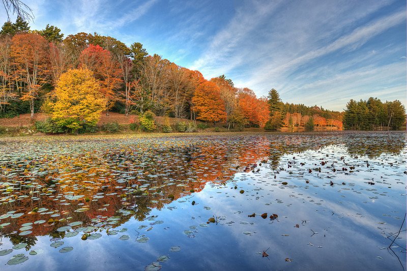 Bass Lake in Fall Colors