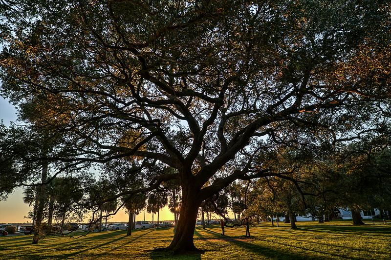Charleston Sunset