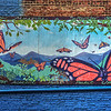 Asheville Mural Project