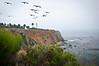 December 5, 2011<br /> Palos Verdes Coastline, California