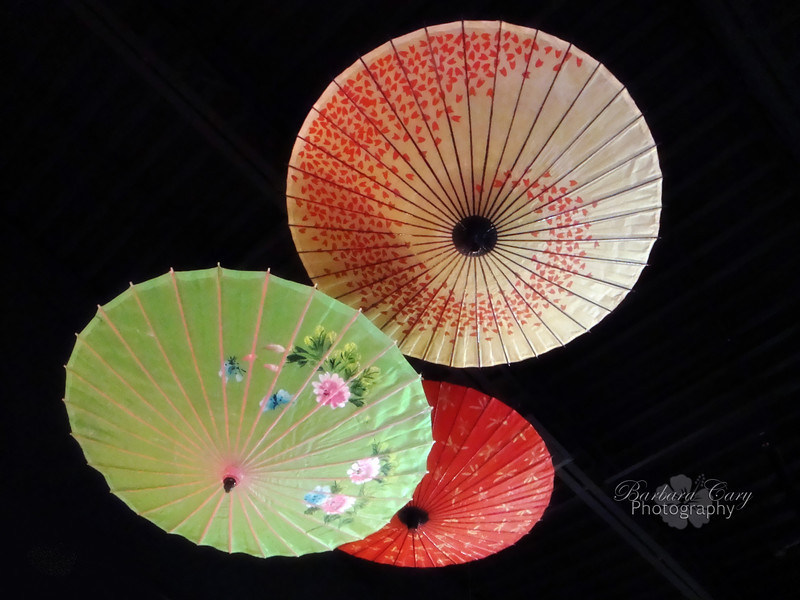 Had lunch yesterday at Sakura, a local Japanese restuarant. The atmosphere was wonderful. These fans were suspended from the ceiling. They are so beautiful so I thought I would share them. Kind of spring-y, aren't they? 3.30.11