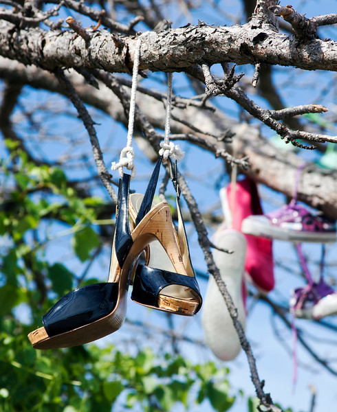 I was driving home on Saturday and saw these shoes hanging from a tree off Hwy 161. Don't know why they are there, but they are, probably 20 pairs or so. 6.25.12