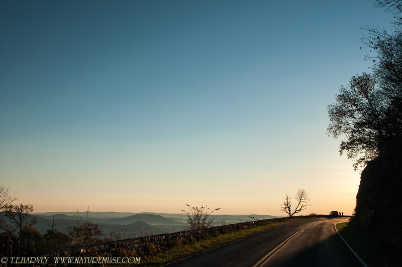 Skyline Drive, near Front Royal, Virginia