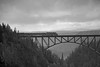 09.26.15: On a dreary early September I hiked from my car on the Parks Highway through the mist, birch, alders, and the muskeg to get to this over look of the Alaska Railroad's bridge across Hurricane Gulch. The bridge is 296 above the creek below. I think the black and white really lends to the atmosphere of the day.