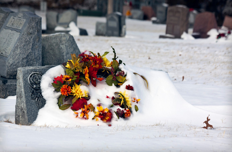 Guess this is rather macabre. There's a cemetery up the street and all the bright colors are accentuated against the snow. It adds a bit of brightness to the dead of winter...