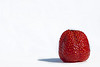 Delicious Strawberry<br /> July 23, 2010<br /> Too busy to get on the computer.