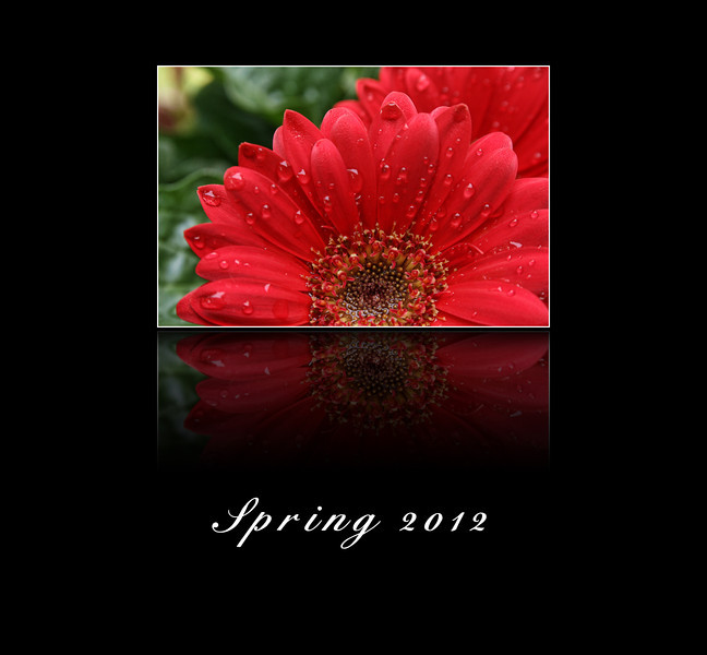 "I pulled this out of my ""archives."" I have so many photos to process from my trip to Texas I am kind of overwhelmed. Anyhow, this is my attempt at saying Happy Spring to all of my fellow smugmugers. Thanks for all your kind and encouraging comments. 4.21.12"