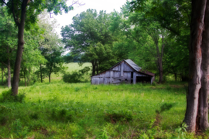 I got lost 1 day driving around on the back roads in Missouri.  I passed by this place and decided to turn around and give it a better look. This is what I saw. 6.15.12 Have a great weekend everyone.