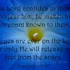 Psalm 25 14-15 copy
