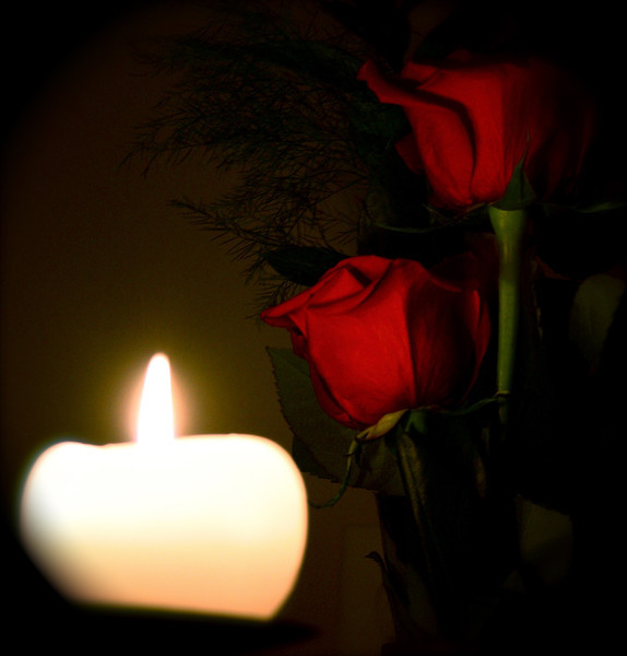 """Light Up""<br /> <br /> <br /> <br /> <br /> I think I cannot get enough of my roses.A Rose  is a rose is a rose after all :-)<br /> <br /> ""Thousands of candles can be lit from a single candle, and the life of the candle will not be shortened. Happiness never decreases by being shared.""~Buddha~"