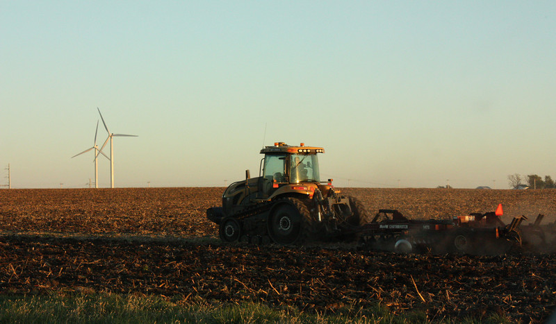 """""""Harvest Time""""<br /> <br /> <br /> <br /> """"Striving for success without hard work is like trying to harvest where you haven't planted""""~David Bly~"""