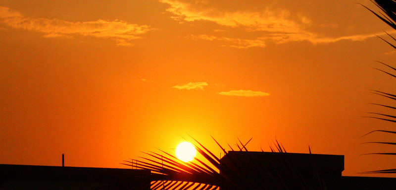 """Urban Sunset""<br /> <br /> <br /> <br /> The scattered tea goes with the leaves and every day a sunset dies. ~William Faulkner ~"
