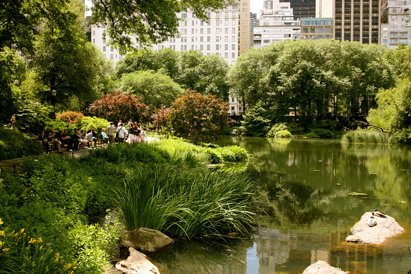 """Central Perk""<br /> <br /> <br /> ""On my first day in New York a guy asked me if I knew where Central Park was. When I told him I didn't he said, 'Do you mind if I mug you here?'.""~ Paul Merton~"