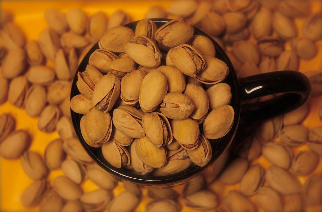 """""""Going Nuts""""<br /> <br /> <br /> <br /> """"God gives the nuts, but he does not crack them.""""~Franz Kafka~"""