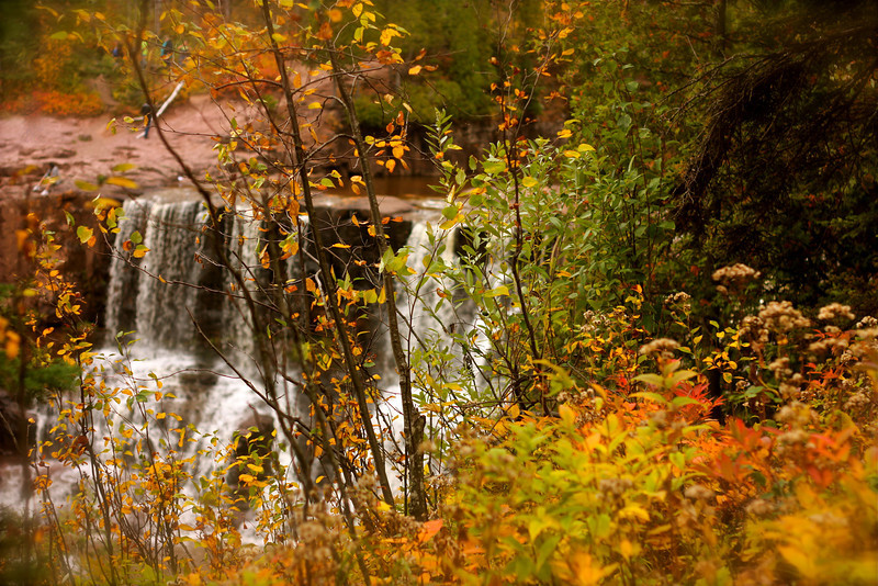 """Fall at Falls""<br /> <br /> <br /> Autumn carries more gold in its pocket than all the other seasons. ~Jim Bishop"