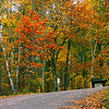 """""""Road to Fall""""<br /> Thank you so much everyone for your likes and comments on yesterday shot !<br /> <br /> Delicious autumn! My very soul is wedded to it, and if I were a bird I would fly about the earth seeking the successive autumns.~George Eliot"""