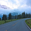 """Mt.Rainier National Park ,WA""<br /> <br /> Look deep into nature, and then you will understand everything better.~Albert Einstein"