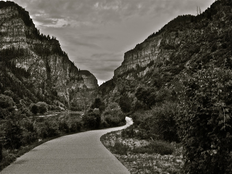"""Lost Road""<br /> <br />  If you don't get lost, there's a chance you may never be found.  ~"