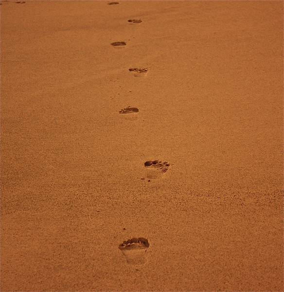 """""""My Footprints""""<br /> <br /> <br />       <br /> """"We all leave footprints in the sand, the question is, will we be a big heal, or a great soul.""""~Anonymous~"""