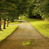 """ Beautiful path""<br /> <br /> ""If the path be beautiful, let us not ask where it leads."" ~Anatole France~"