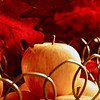 """""""Autumn Apple""""<br /> <br /> <br /> """"Every thought is a seed. If you plant crab apples, don't count on harvesting Golden Delicious.""""~Anonymous~"""