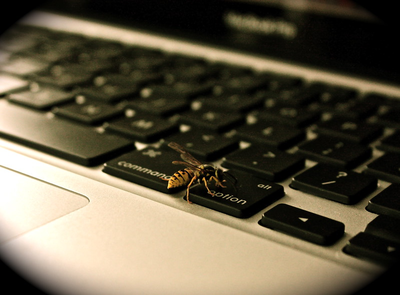 """Optional Assistant""<br /> <br /> Found this bee interesting when it was running around my keyboard, giving me a hand at my work. lol!<br /> <br /> <br /> <br /> It is literally true that you can succeed best and quickest by helping others to succeed. ~Napoleon ~"