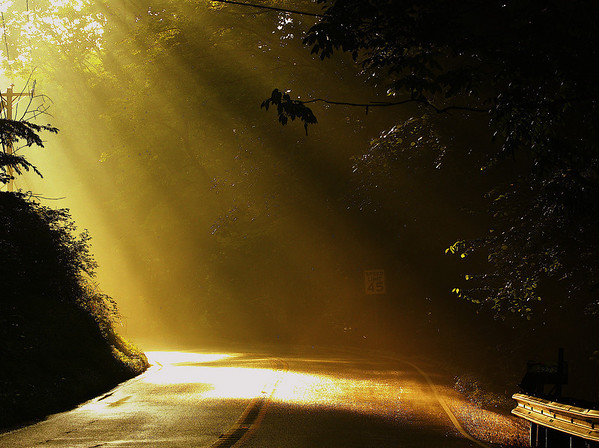 """""""Rays of hope""""  This was a little risky shot with me trying to capture this shot right from my car on a dark road (with no shoulder) in between the woods after a heavy rain. I was kind of lost on this road but the sun-rays in that darkness was a nice relief.   The road that is built in hope is more pleasant to the traveler than the road built in despair, even though they both lead to the same destination.  ~Marian Zimmer Bradley"""