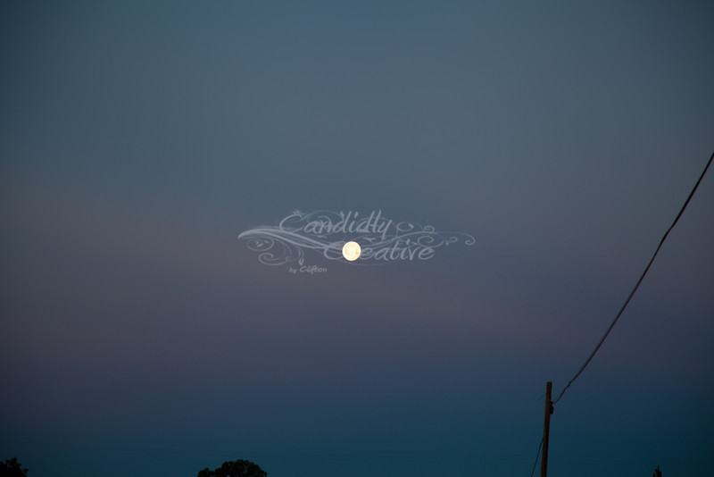 Love the winter moon :) This was at sunrise :)