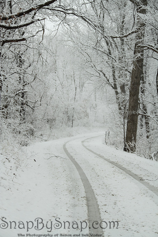 Country road in the winter.