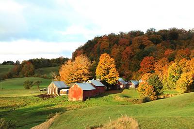 Jenny Farm