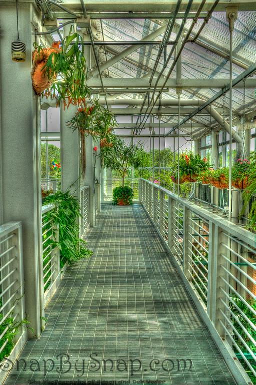 HDR Garden