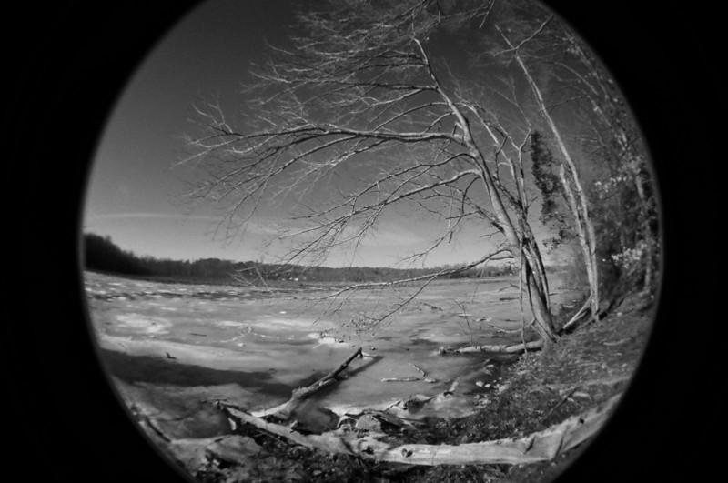Posted 12.30.2010 Aquia Creek, fisheye 2 camera, fuji colorfilm converted to B&W in adobe elements 8