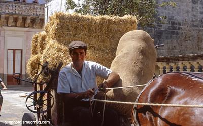 ~1976 - near San Vito, Italy