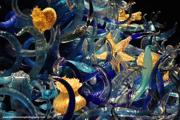 Dale Chihuly Garden & Glass Museum - Seattle, WA 2013