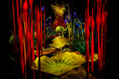 Dale Chihuly Garden and Glass Exhibition - Seattle, Washington