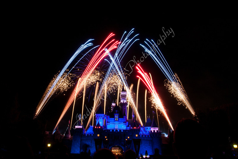 Disney Castle 4th of July Fireworks