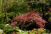 s_1_Home_2006-04-03_0020