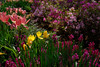 1_Home_2006-04-03_0033